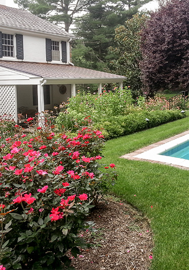 Delaware landscaping and lawn maintenance brandywine for Professional garden maintenance